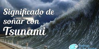 significado-sonar-tsunami