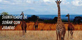 Soñar con jirafas