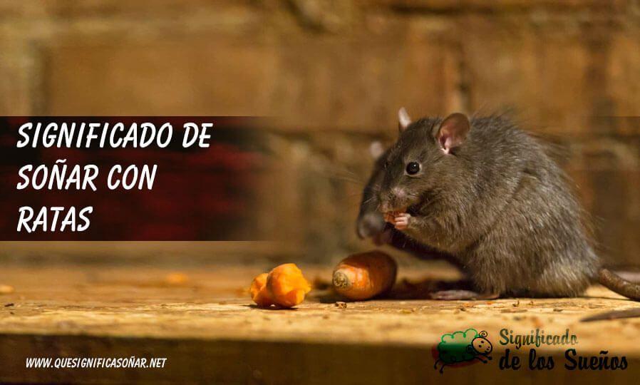 Soñar con ratas o ratones