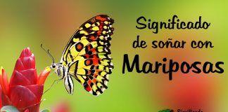 Significado de soñar con mariposas