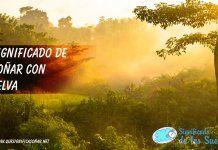 Soñar con selva