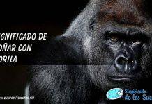 Soñar con gorilas