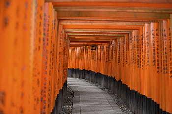 Soñar color naranja