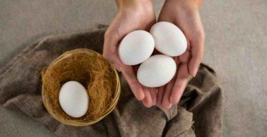 Manos de mujer sosteniendo tres huevos