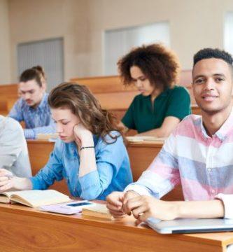 Compañeros de clase en el aula estudiando