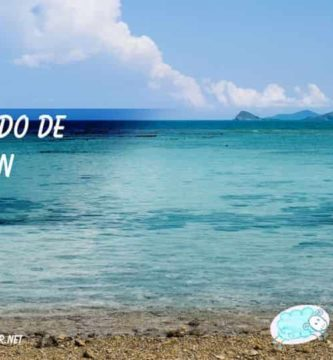Paisaje a orillas del mar