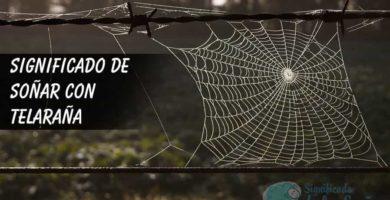 Telaraña hecha en una valla de alambre